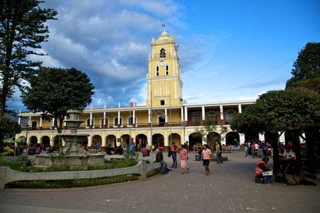 瓜地馬拉 薇薇特南果 羅斯瑪莊園水洗